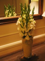 Gladiolas at the Imperial Hotel in New Delhi