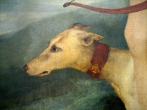 Italian hound in painting