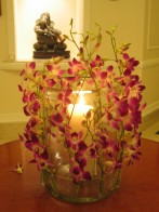 Orchids at the Imperial Hotel in New Delhi