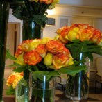Roses at the Imperial Hotel in New Delhi